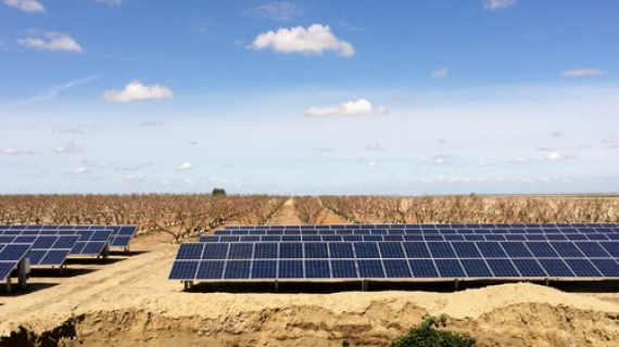 Agriculture Solar Systems